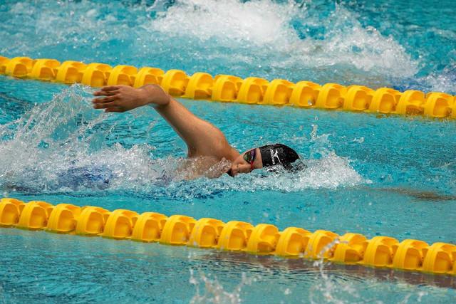 関東 高校 水泳 2019